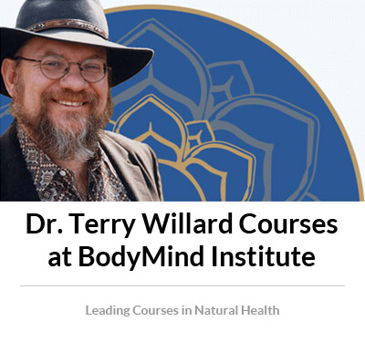 Dr. Terry Willard Courses at BodyMind Institute